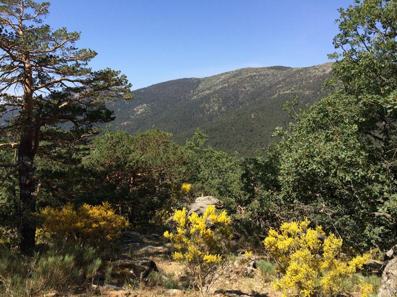 11.-Paisajes-en-la-Ruta-de-los-Miradores-de-los-Poetas.-Sierra-de-Guadarrama
