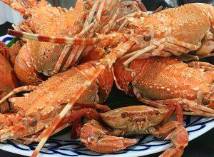 ¿Dónde comer en Galicia? Sabores gallegos. De lo bueno, ¡lo mejor!