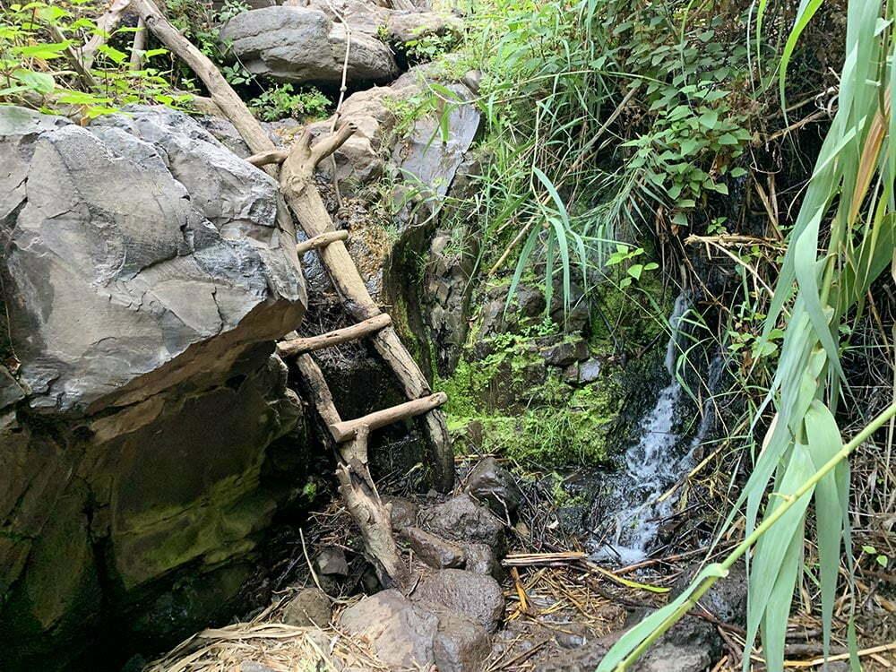 Escalera de madera en mitad de la ruta a la Cascada de Arure
