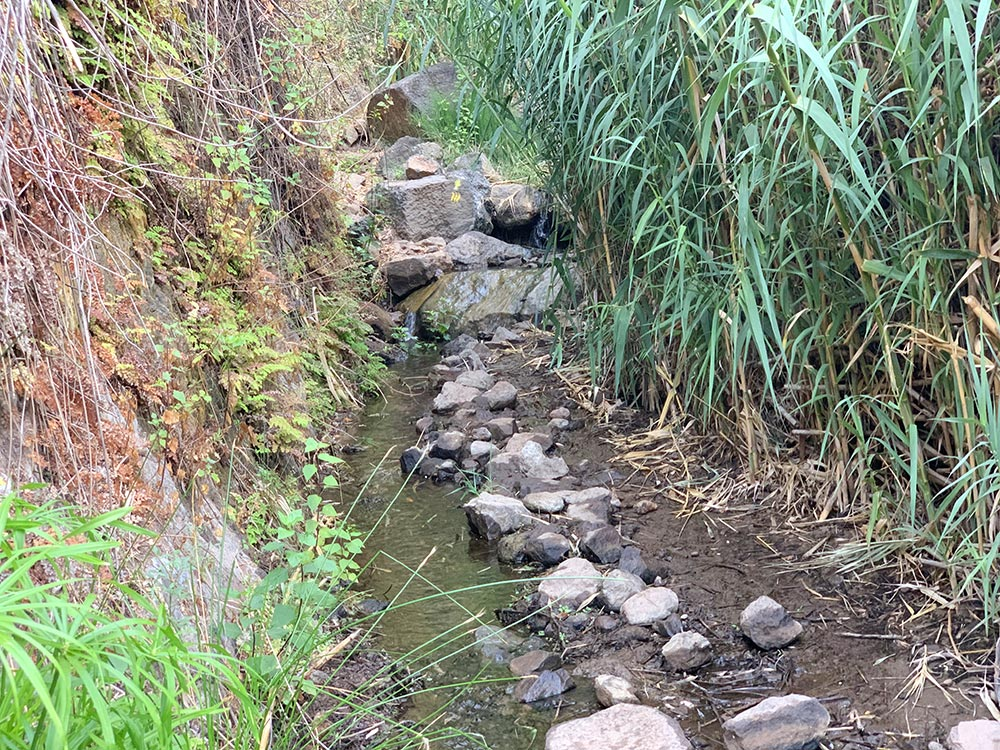 Camino de piedras para no mojarse